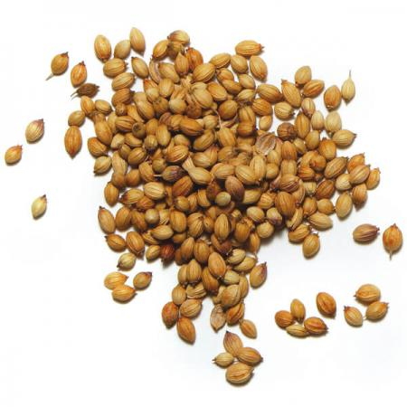 whole coriander seeds in curry